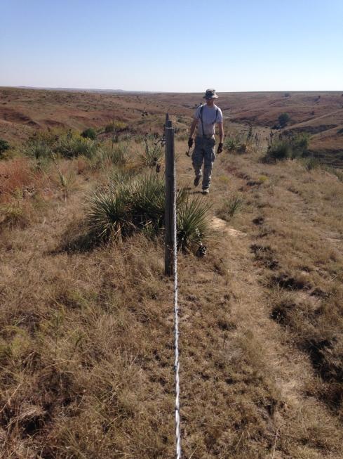 Brandon on fence line